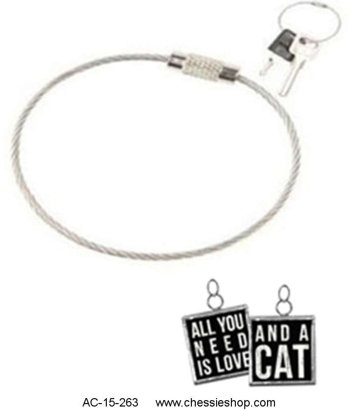 Key Chain, All you need is love and a cat