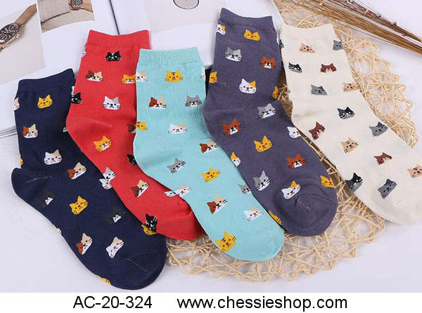 Socks, Cute Cats, Vivid Color