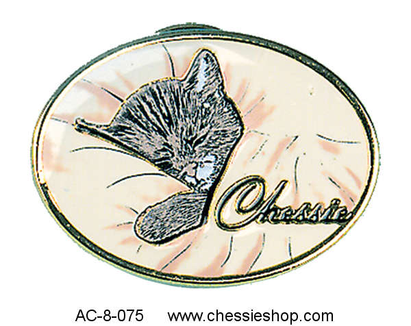 Lapel Pin, Chessie Colorfill