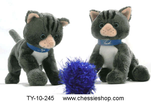 Cat Related Toys